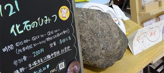 【実験講座】化石のひみつ 終了